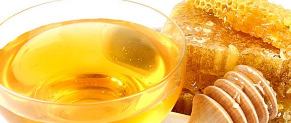 Сбиваем температуру мёдом